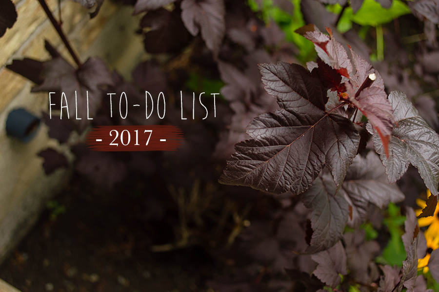 A carefree, no pressure to-do list for this autumn