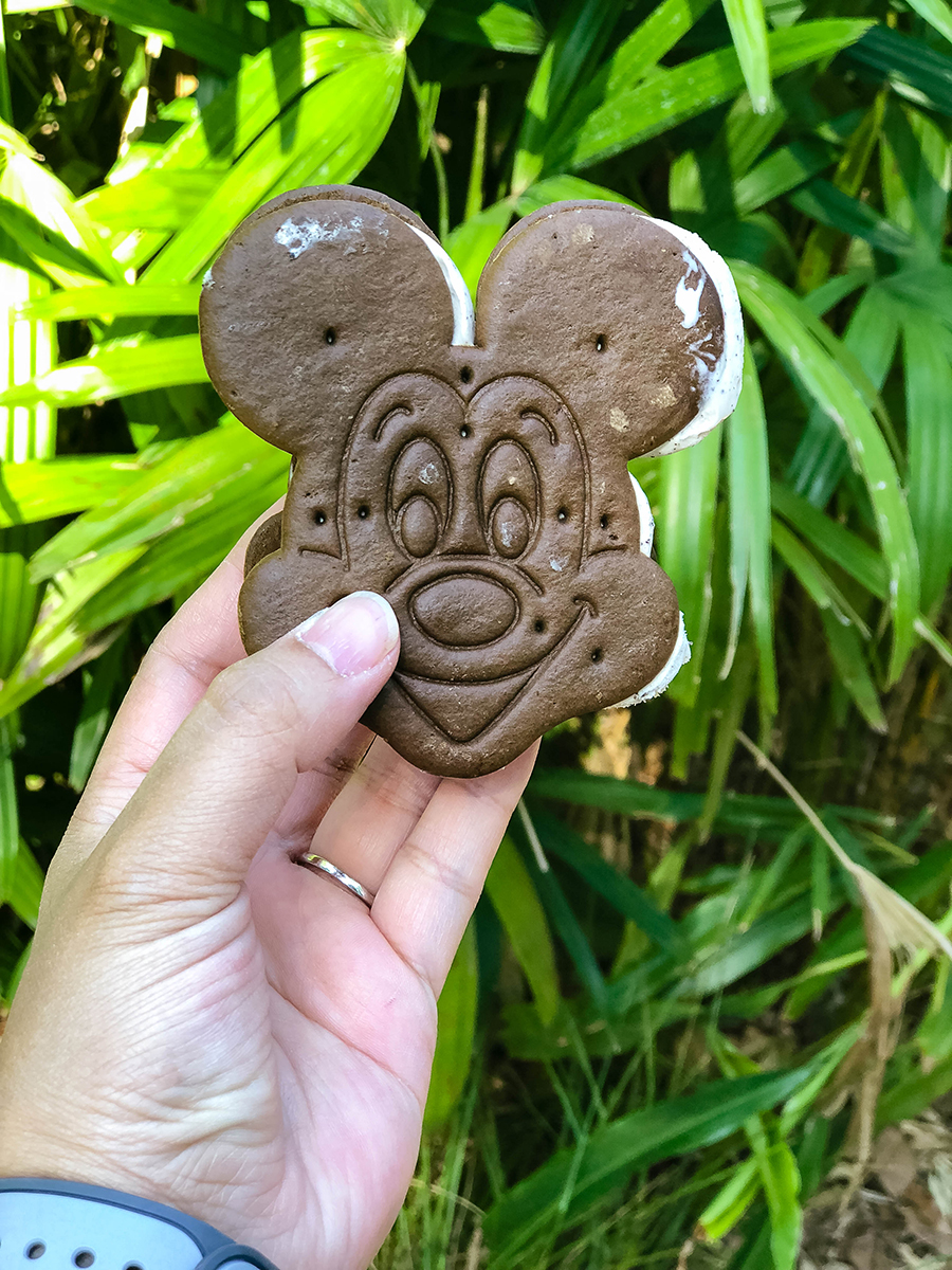 These Disney foods are a total must-try: come on, put on your Mickey Ears and get your tummy prepared! We've got a magical foodie adventure to go on!