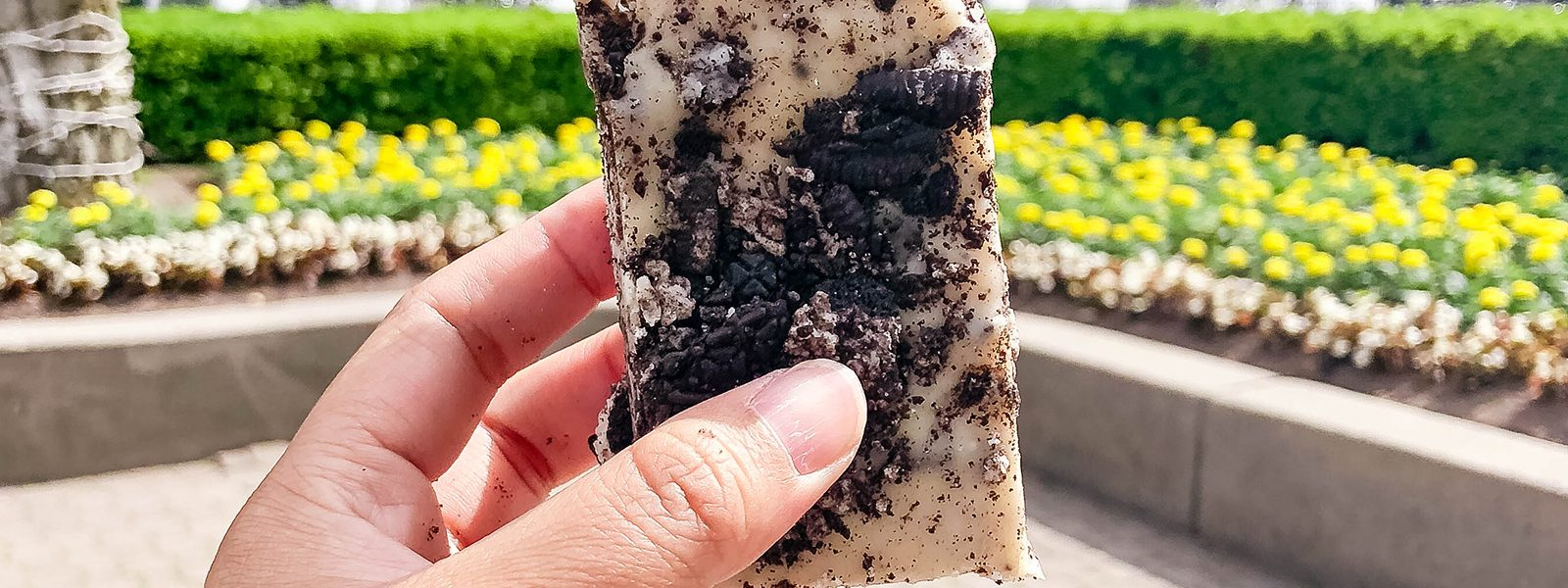 How to Be a Foodie at Canada's Wonderland: Snacks You Won't Want to Miss