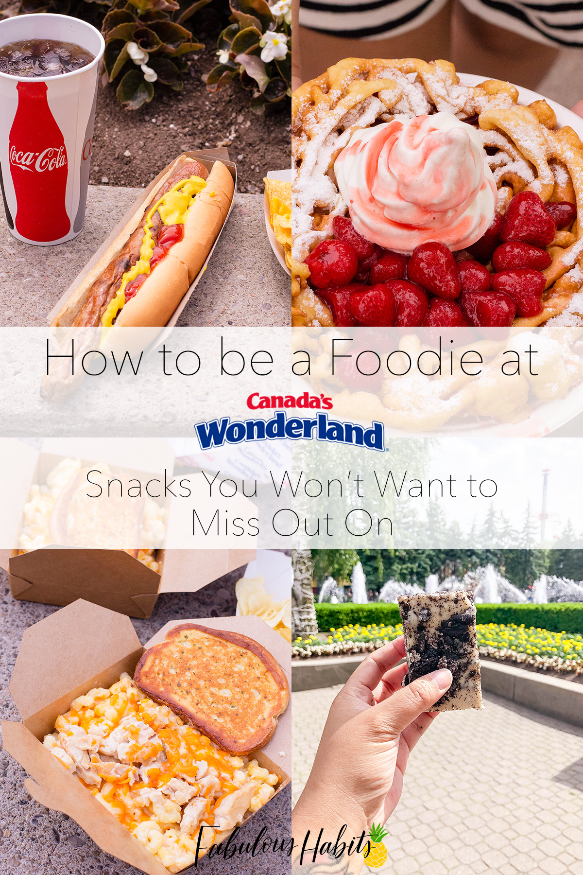 Canada's Wonderland Snacks that are worthy for your foodie taste buds (trust me, you'll want to bring your appetite!